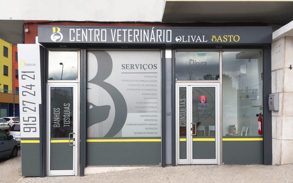 https://www.cvetolivalbasto.pt/wp-content/uploads/2018/07/cvet_1-1000x625.jpg